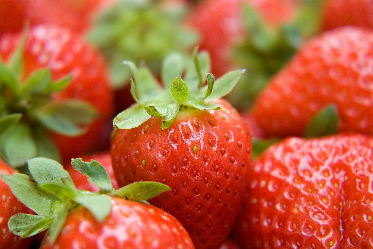 Pesticides and sperm health