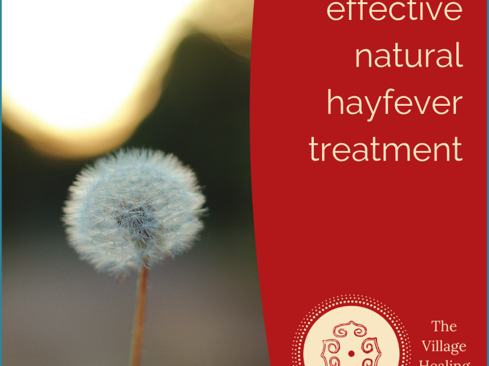 Acupuncture for allergic rhinitis and hayfever